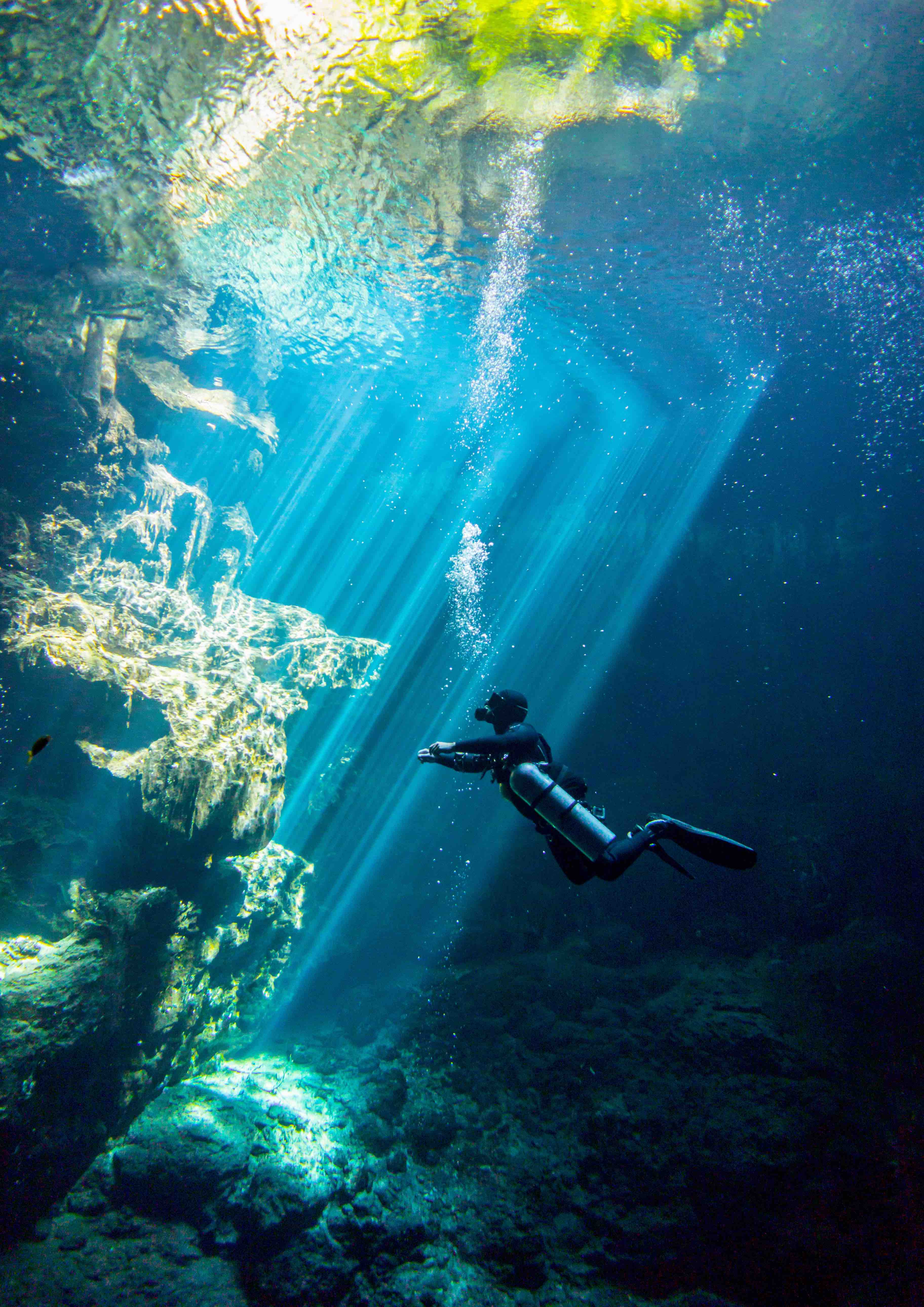 Buceo Cenotes The Pit & Dos Ojos